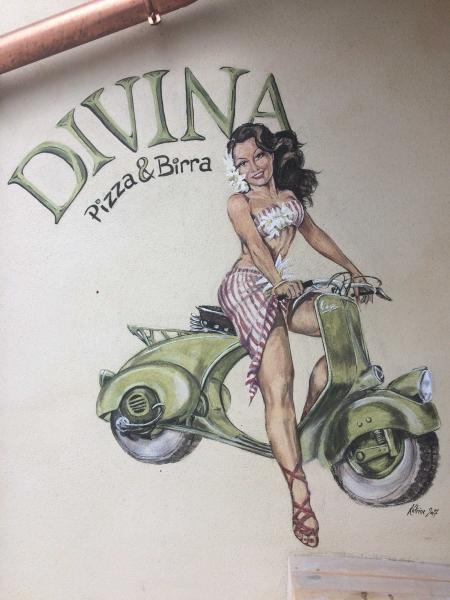 Divina fuldt logo